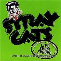 Stray Cats Live From Europe Barcelona 22nd July 2004 CD